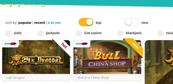 Playzee Casino Review: 5 key parts on Playzee Casino